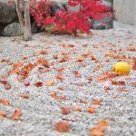 【五感を満たして心も体も癒す】京都旅行おすすめスポット
